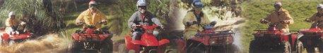 quad bike safari new zealand